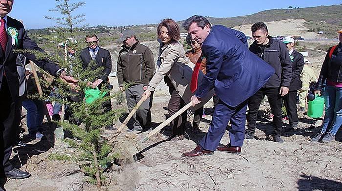 '15 Temmuz Demokrasi Şehitleri Hatıra Ormanı' oluşturuldu