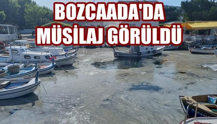 Bozcaada'da tedirgin eden müsilaj görüntüsü (VİDEO)