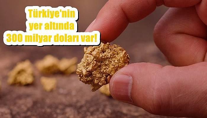 Türkiye'nin yer altında 300 milyar doları var!