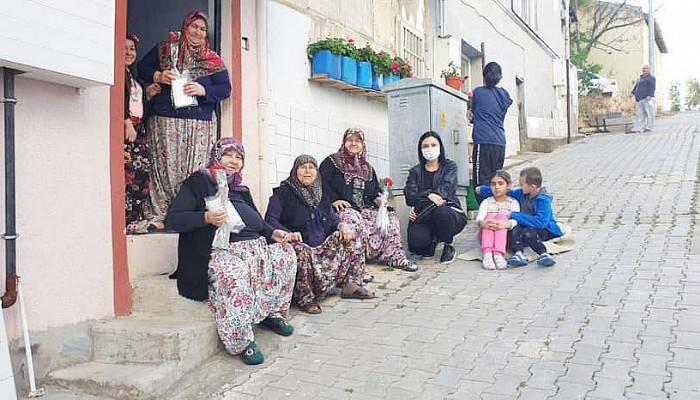 CHP KADIN KOLLARI ANNELERE KARANFİL DAĞITTI