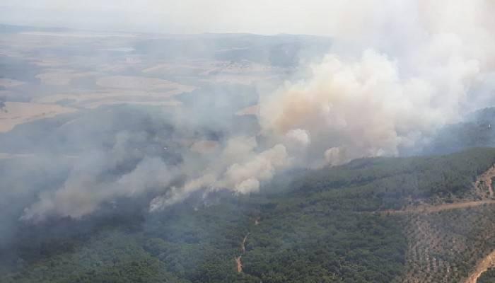 Keşan'da orman yangını kontrol altında! (VİDEO)
