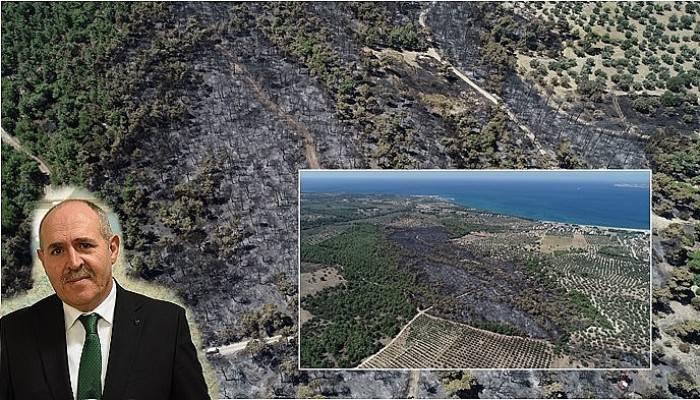 Çanakkale'deki 52 orman yangınında 222 hektar alan kül oldu