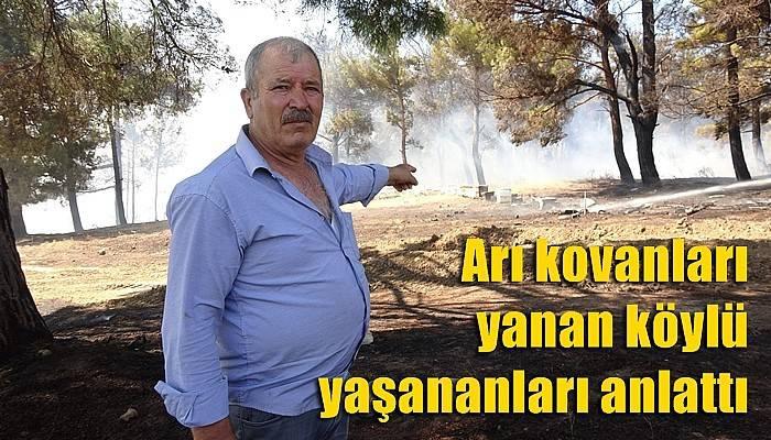 Kurşunlu köyündeki yangın kontrol altında (VİDEO)