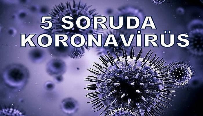5 Soruda Koronavirüs