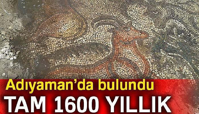Çiftçiler tarlada 1600 yıllık tarihi mozaik buldu