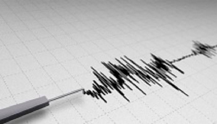 Gökova Körfezi'nde 4.1 büyüklüğünde deprem|Son depremler