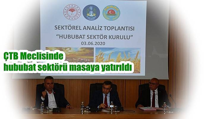 ÇTB Meclisinde hububat sektörü masaya yatırıldı