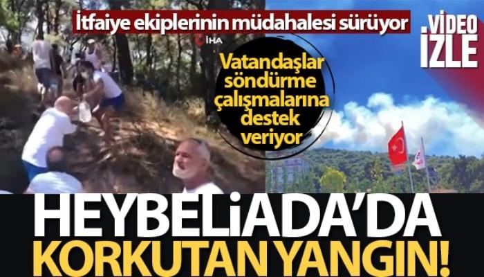 Heybeliada'da ormanlık alanda yangın çıktı (VİDEO)
