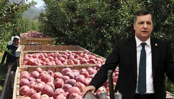 'Hasat başlayacak, depolar elma dolu'