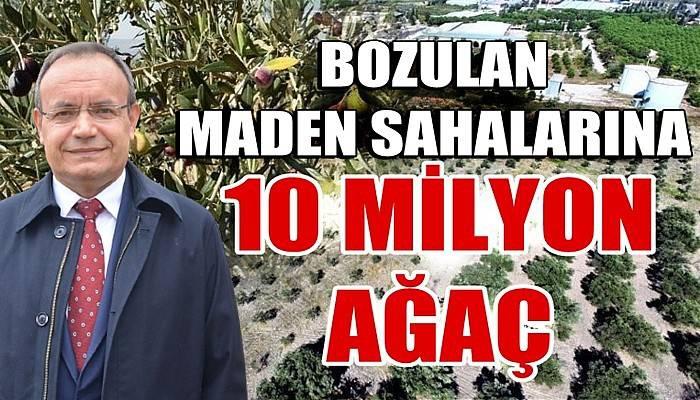 Bozulan maden sahalarına 10 milyon ağaç (VİDEO)