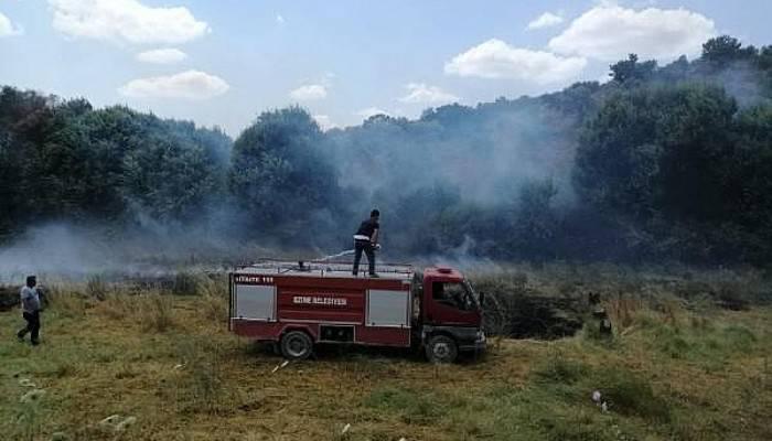 Ezine'de zeytinlik ve ot yangını (VİDEO)