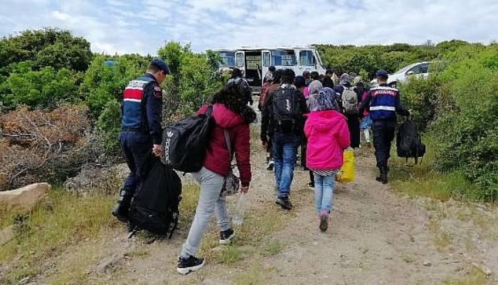 Çanakkale'de 53 kaçak yakalandı (VİDEO)
