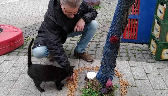 Hayvanlar İçin Sokaklara Yem Bırakıldı