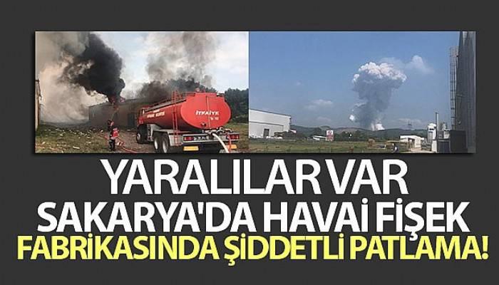 Sakarya'da havai fişek fabrikasında patlama (VİDEO)