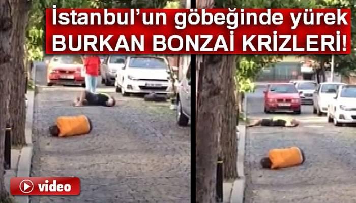 İstanbul'un göbeğinde yürek burkan bonzai krizleri kamerada