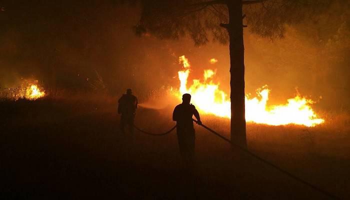 Gelibolu'da, otluk alanda korkutan yangın