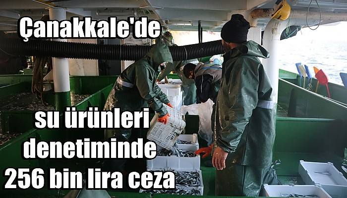 Çanakkale'de su ürünleri denetiminde 256 bin lira ceza (VİDEO)