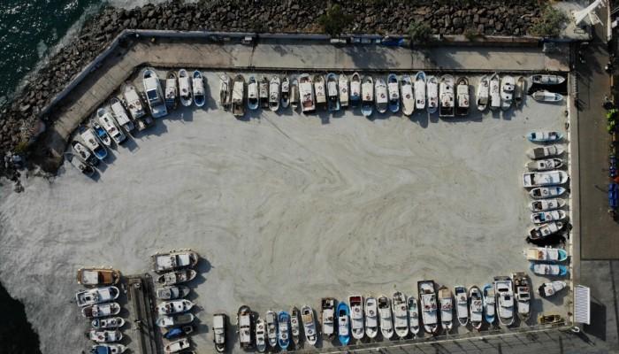 Bakan Kurum: 'Toplam 2 bin 166,5 metreküp müsilajı bertarafa gönderdik'