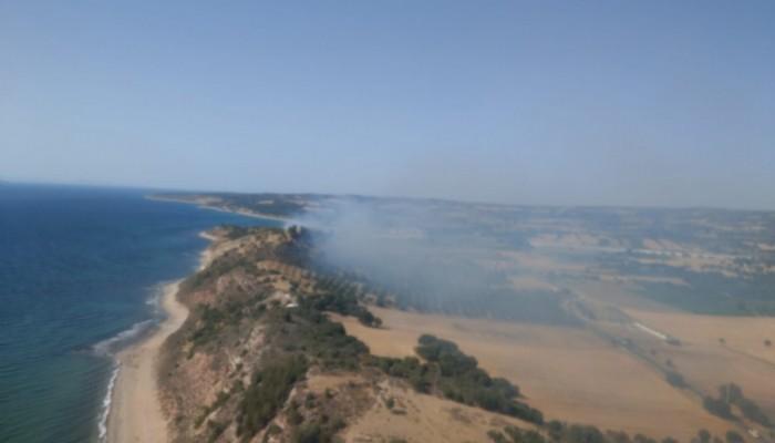 Alemşah Köyü'nde orman yangın!
