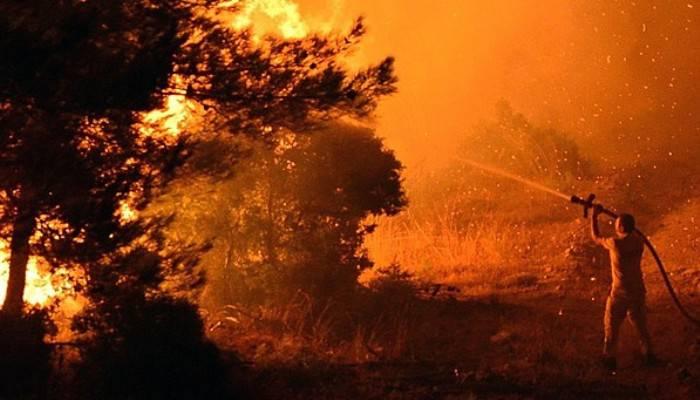 Yangın kontrol altında! AFAD'tan açıklama
