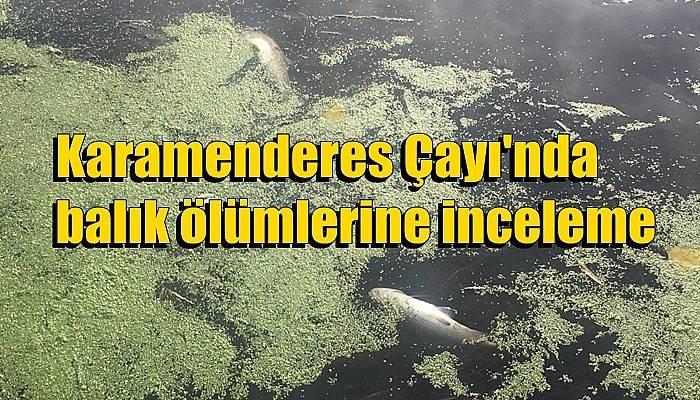 Karamenderes Çayı'nda balık ölümlerine inceleme