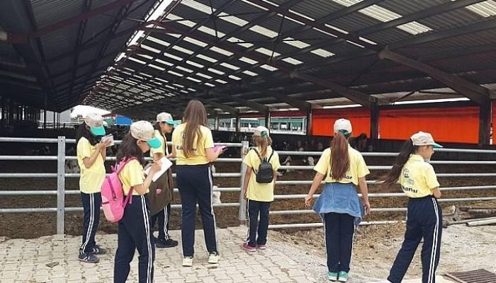 Genç Çiftçilerden Çiftlik Ziyareti