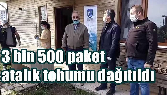 3 bin 500 paket atalık tohumu dağıtıldı