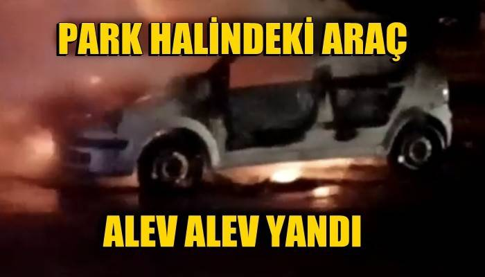 Park halindeki araç alev alev yandı (VİDEO)
