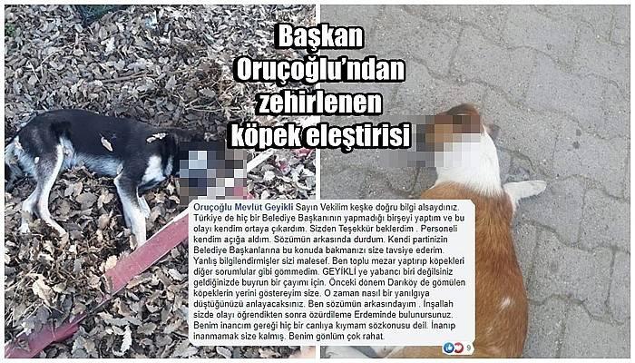 Başkan Oruçoğlu'ndan Milletvekili Ceylan'a zehirlenen köpek eleştirisi