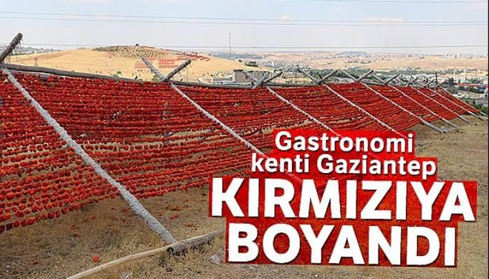 Gastronomi kenti Gaziantep kırmızıya boyandı