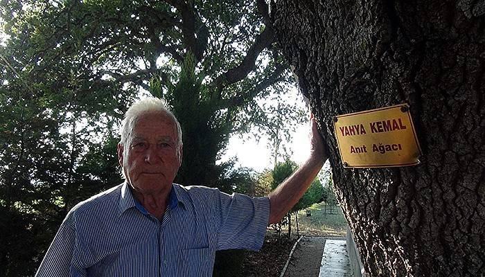 Şair ve yazarların adını anıt ağaçlarda yaşatıyor (VİDEO)