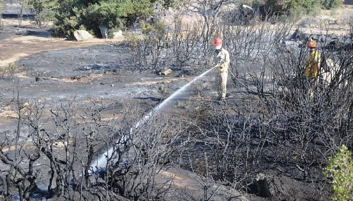 Ezine'de makilik alanda yangın
