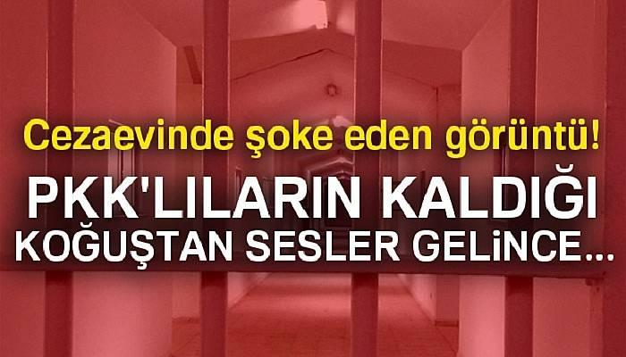 Cezaevinden kaçmaya çalışan PKK'lılar yakalandı