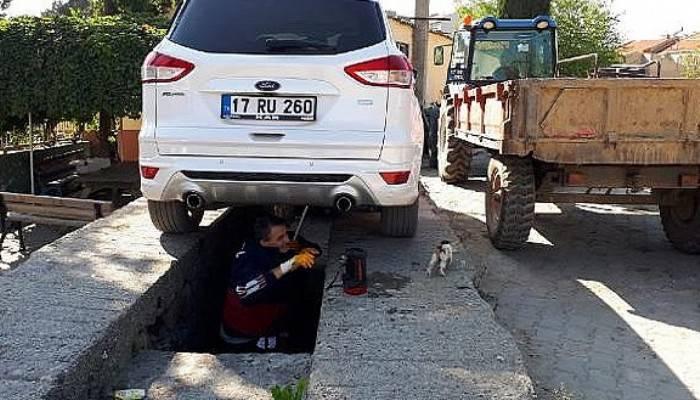 Otomobilin tekerlek boşluğa giren yavru kediyi itfaiye kurtardı
