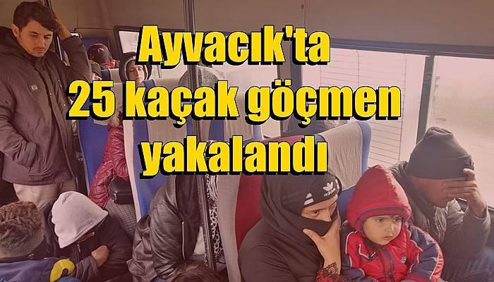 Ayvacık'ta 25 kaçak göçmen yakalandı (VİDEO)