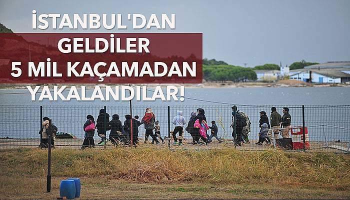 İstanbul'dan geldiler 5 mil kaçamadan yakalandılar!