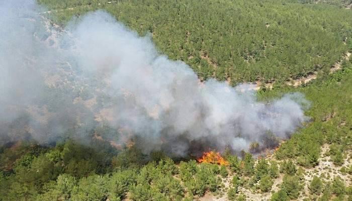 Güncelleme: Çanakkale'de orman yangını kontrol altına alındı