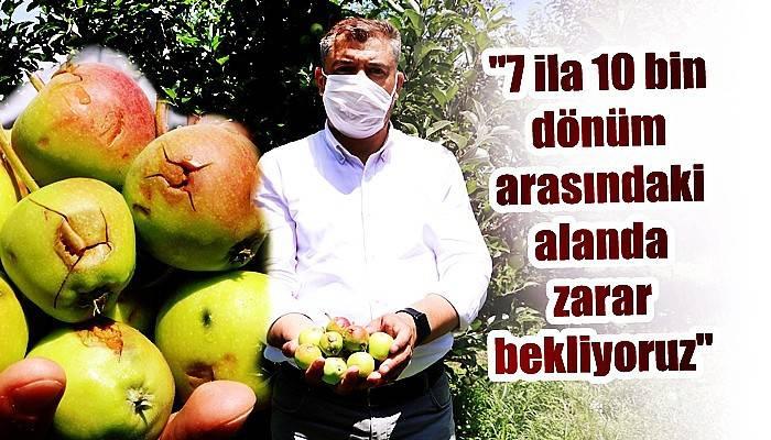 Bayramiç'te dolunun vurduğu elma bahçelerinde zarar tespiti sürüyor