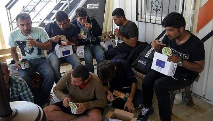 Ayvacık'ta 31 kaçak göçmen yakalandı (VİDEO)