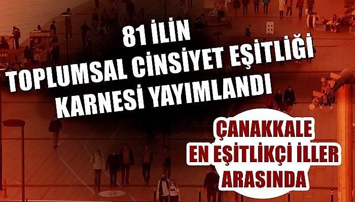 Çanakkale Türkiye'nin en eşitlikçi illeri arasında