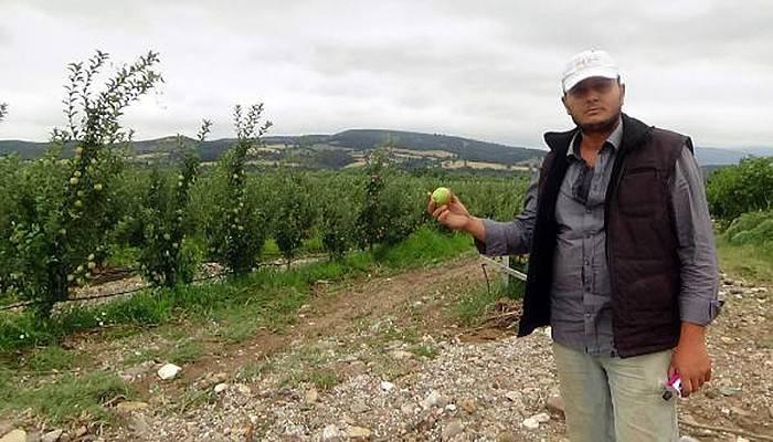 Yağış tarlaları da vurdu (VİDEO)