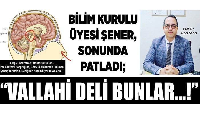 BİLİM KURULU ÜYESİ ŞENER, SONUNDA PATLADI; 'VALLAHİ DELİ BUNLAR...!'