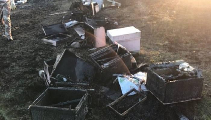 30 kovan arı yandı