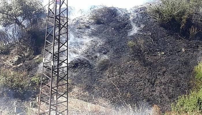 Gelibolu'da makilik yangını; 1 saatte söndürüldü
