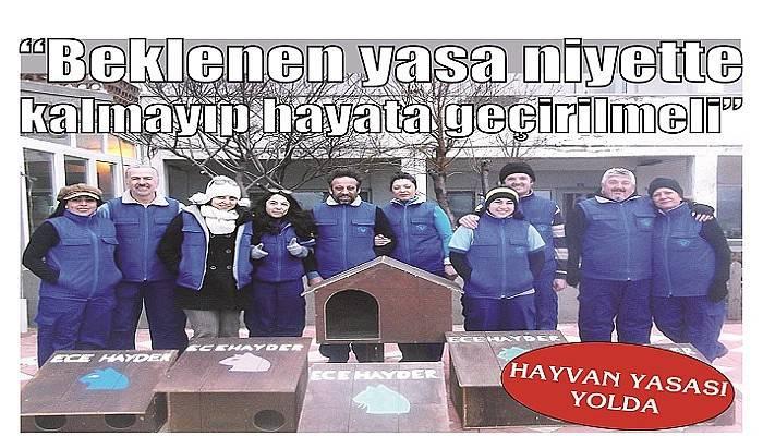HAYVAN YASASI YOLDA