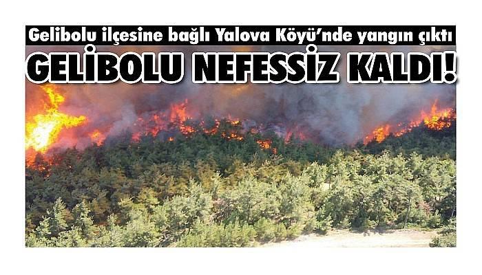 Gelibolu ilçesine bağlı Yalova Köyü'nde yangın çıktı