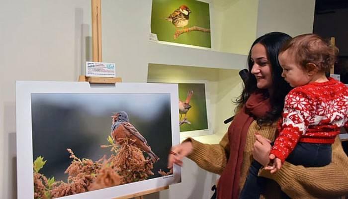 Fotoğrafçılar Çanakkale Kuşlarını Görüntüledi