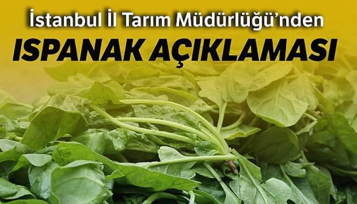 İstanbul İl Tarım ve Orman Müdürlüğünden ıspanak zehirlenmelerine ilişkin açıklama