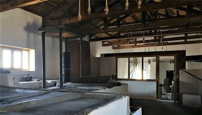 Gülpınar Zeytinyağı Müzesi bölge turizmine can verecek