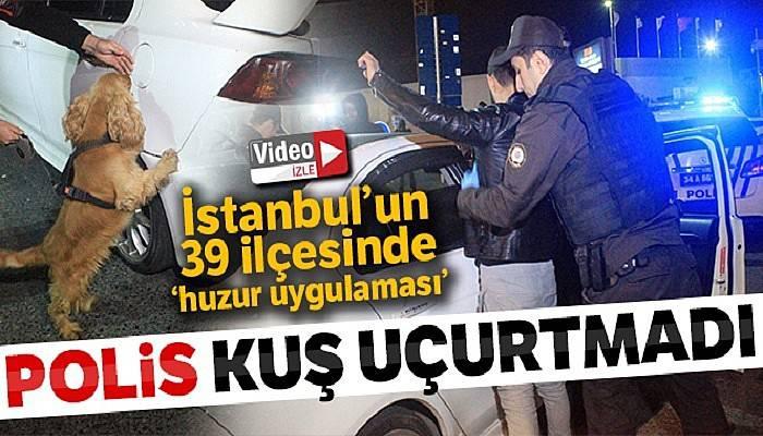 İstanbul'un 39 ilçesinde helikopter destekli 'huzur uygulaması'